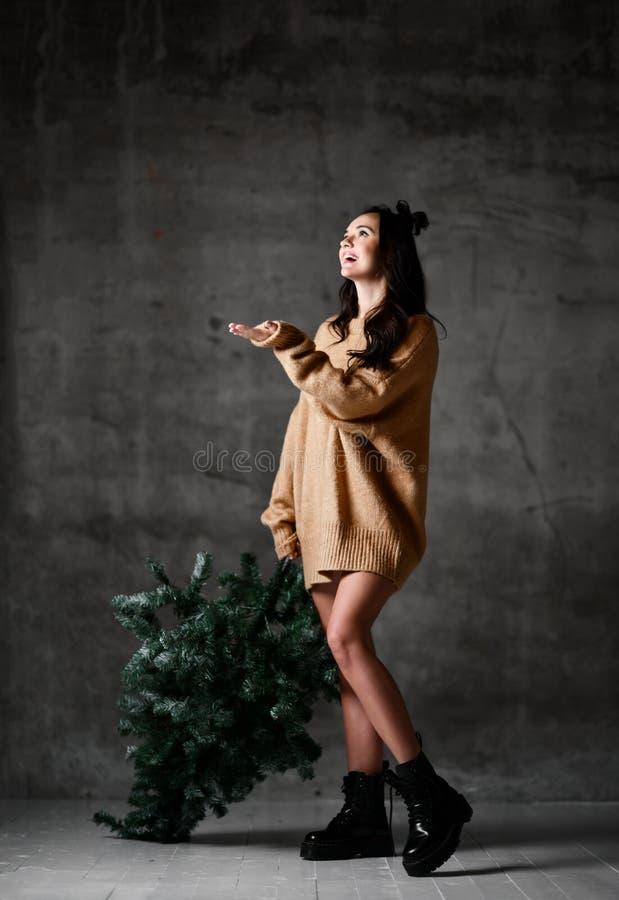 Seksownego modniś kobiety chwyta Bożenarodzeniowy jedlinowy drzewo w trykotowej pulower bluzce gotowej dla nowego roku świętowani zdjęcie royalty free