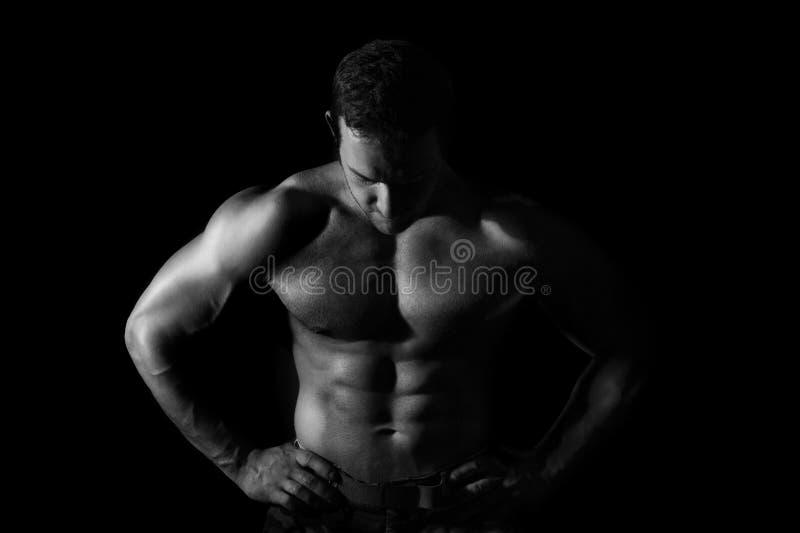 Seksowny mięśniowy model zdjęcie royalty free