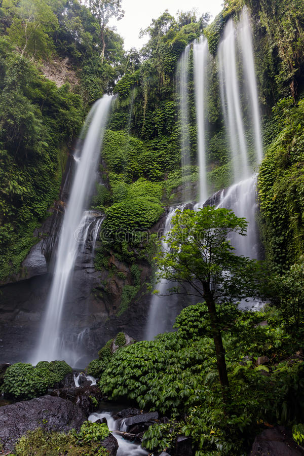 Sekumpul瀑布在北巴厘岛,印度尼西亚 免版税库存照片