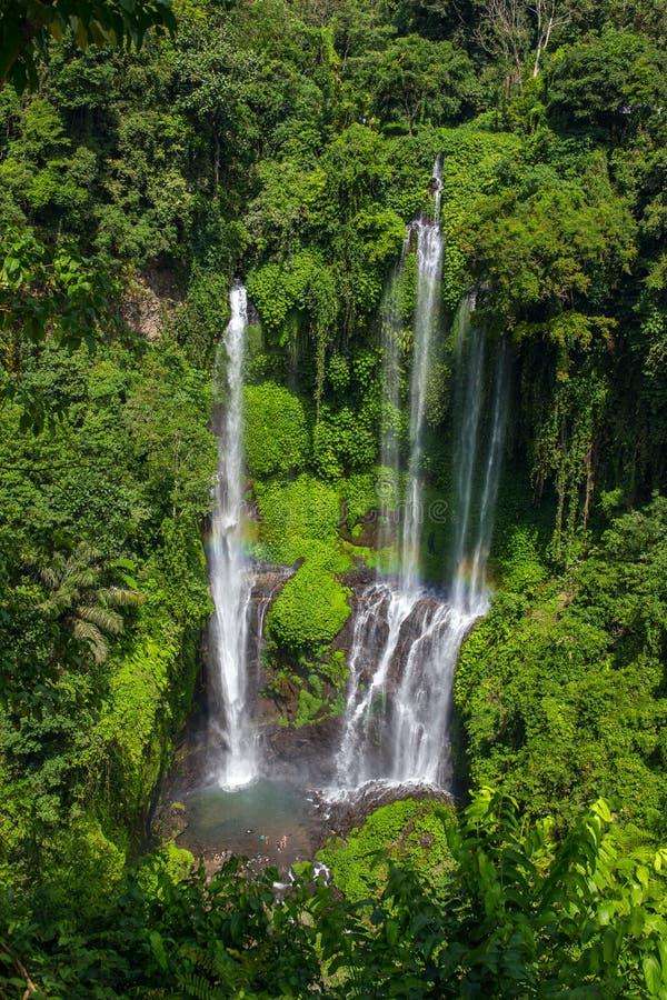 Sekumpul瀑布在巴厘岛 免版税库存图片