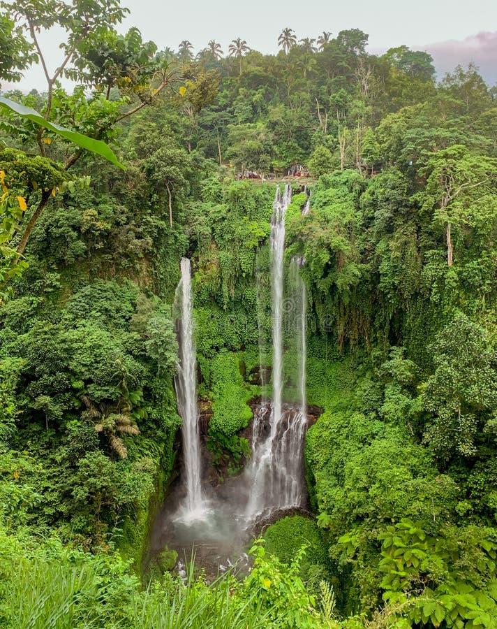 Sekumpul vattenfall i flygvyn på Bali arkivfoton