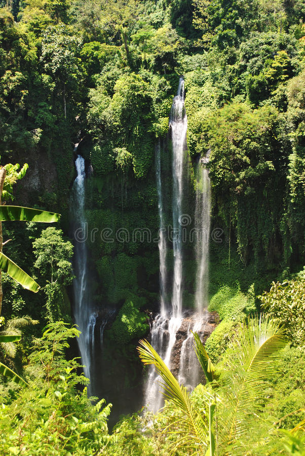 Sekumpul-Wasserfall in Bali stockbild
