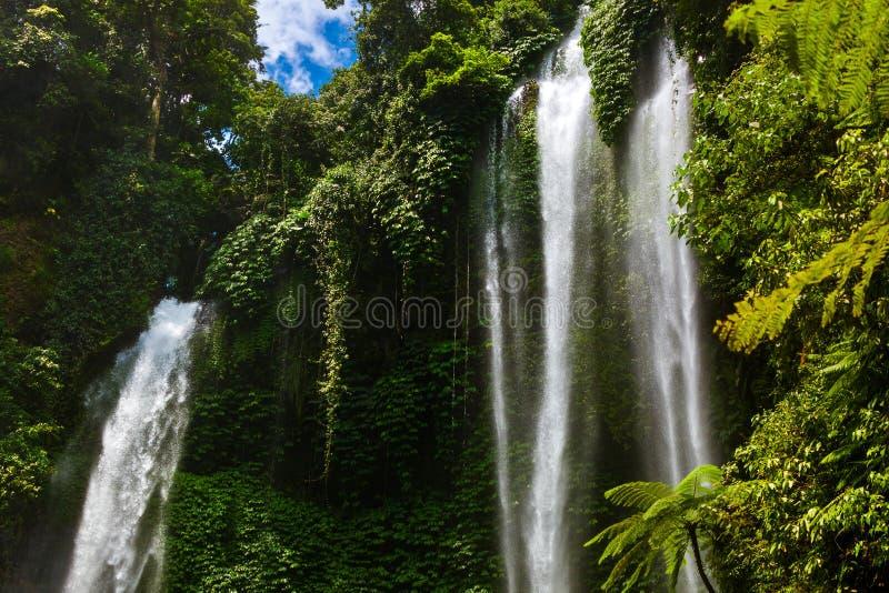 Sekumpul waterfall - Bali island Indonesia royalty free stock image