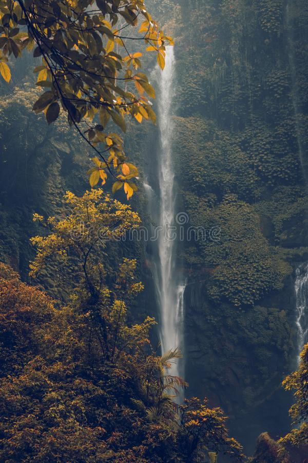 Sekumpul waterfall in the green rainforest of Bali island, Indonesia. Asia royalty free stock photography