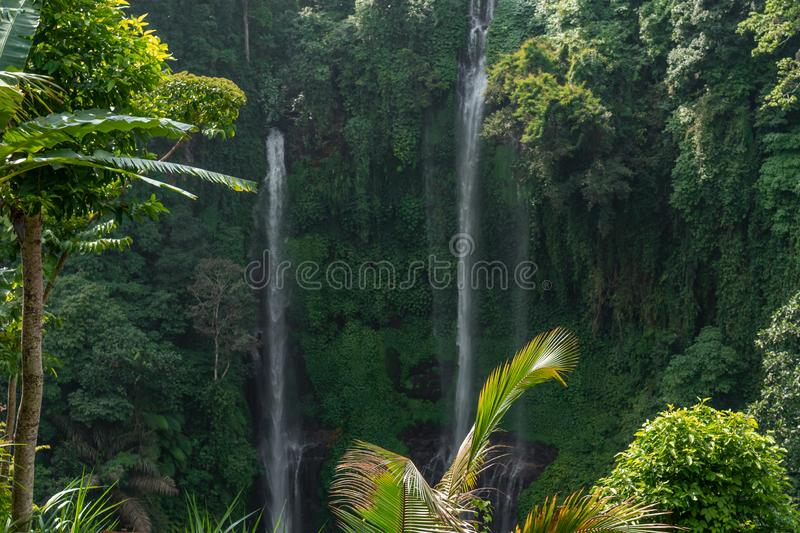 Sekumpul waterfall in the green rainforest of Bali island, Indonesia. royalty free stock images