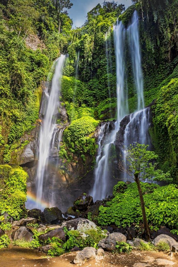 Sekumpul Waterfall in summer. View of the falling water of the Sekumpul waterfall in the Indonesian jungle stock image