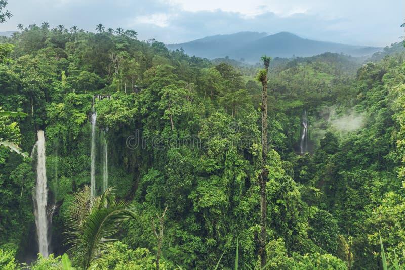 Sekumpulwaterval in de wildernis met duidelijk water die op steenklippen en groene bomen allen rond vallen, Bali, Indonesië stock afbeeldingen