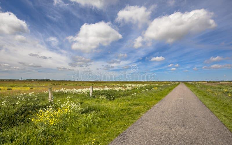 Sekundär lantlig väg i polderlandskap fotografering för bildbyråer