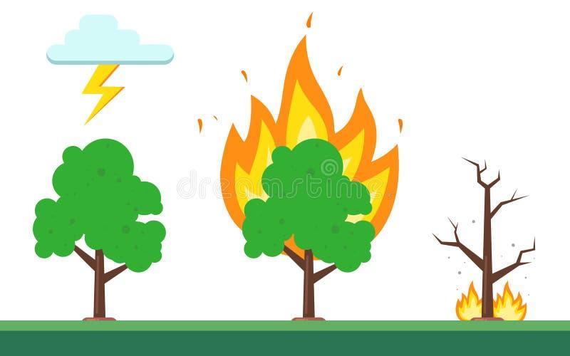 Sekwencja ogień w lesie naturalna natura ilustracja wektor