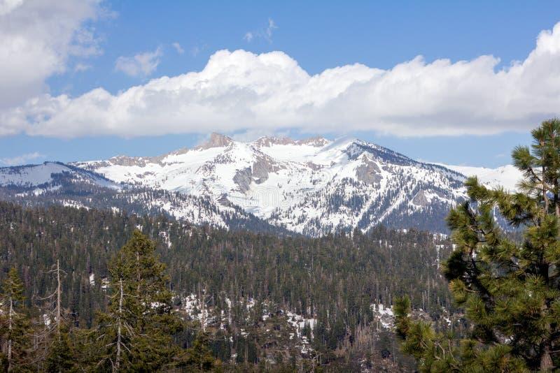 Sekwoja park narodowy - Wielki Zachodni podział zdjęcia stock