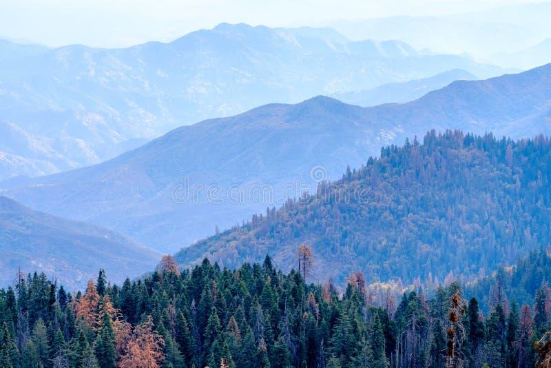 Sekwoja parka narodowego góry krajobraz przy jesienią fotografia stock