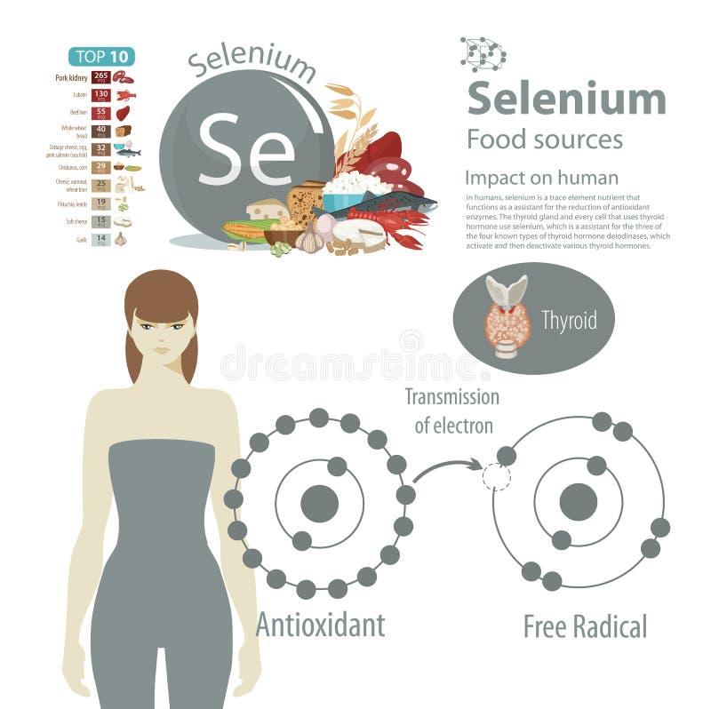 selênio O efeito dos minerais na saúde humana Uma dieta saudável e um estilo de vida saudável ilustração stock