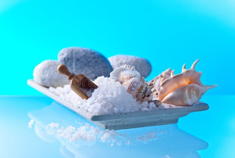 Sel de mer avec des pierres et des coquilles image stock