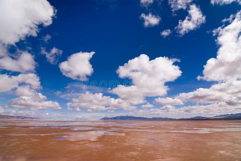 sel de salines de lac de grandes de l'Argentine image stock