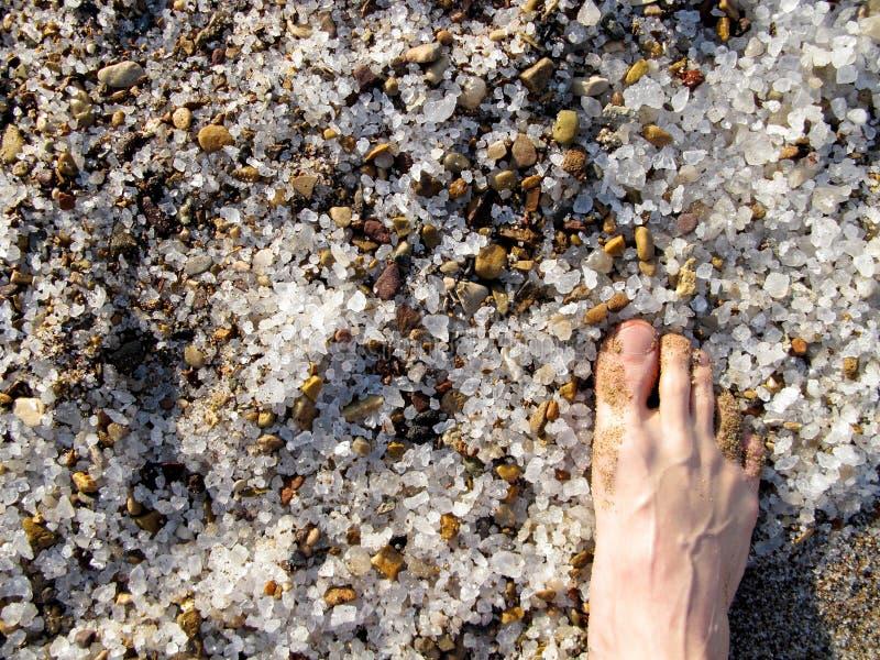 Sel mort de sable de mer photos stock