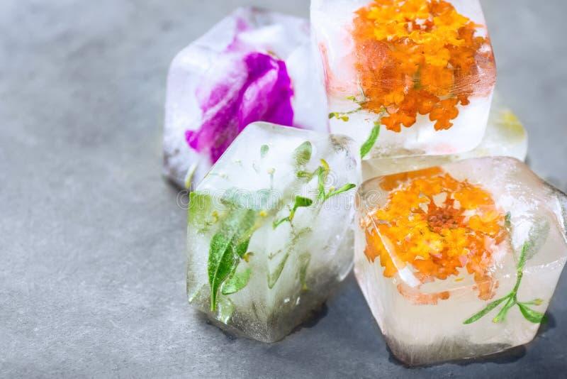 Selbst gemachte Eiswürfel mit gefrorenen Krautbetriebsblumen Gesichtshautpflegeschönheitsbadekurort-antialternkonzept stockbilder