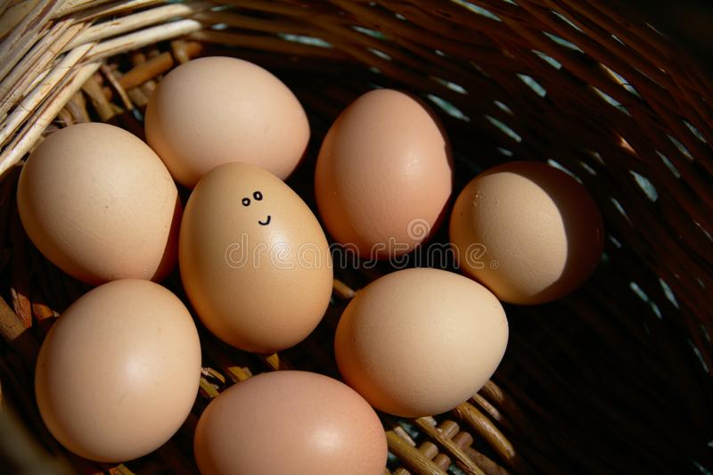 Selbst gemachte Hand gezeichnetes lächelndes Ei - Gruppe Eier Sie sind in einem Korb lizenzfreie stockfotos