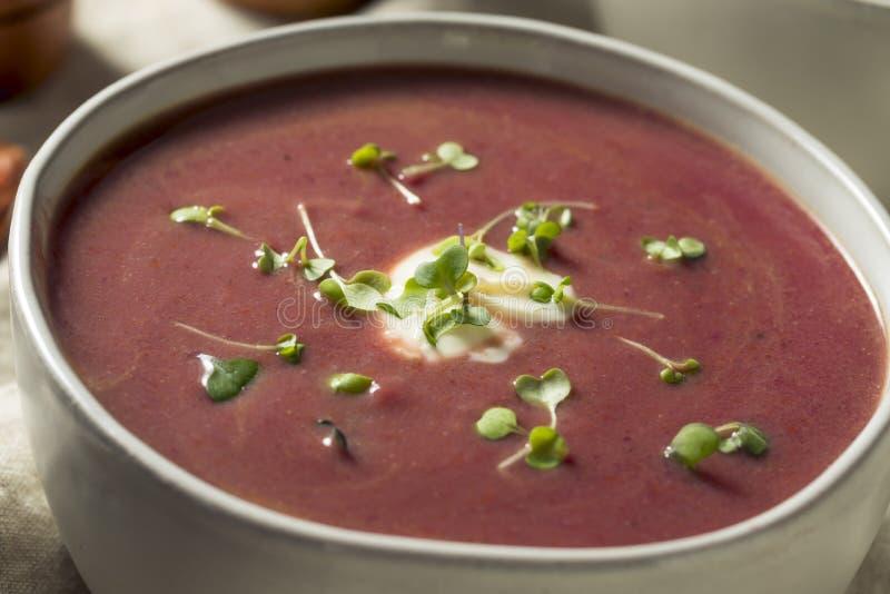 Selbst gemachte purpurrote Süßkartoffel-Suppe lizenzfreie stockfotos