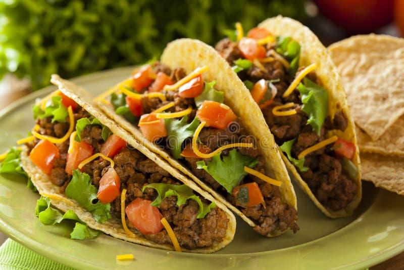 Selbst gemachte Rinderhackfleisch-Tacos lizenzfreie stockfotos