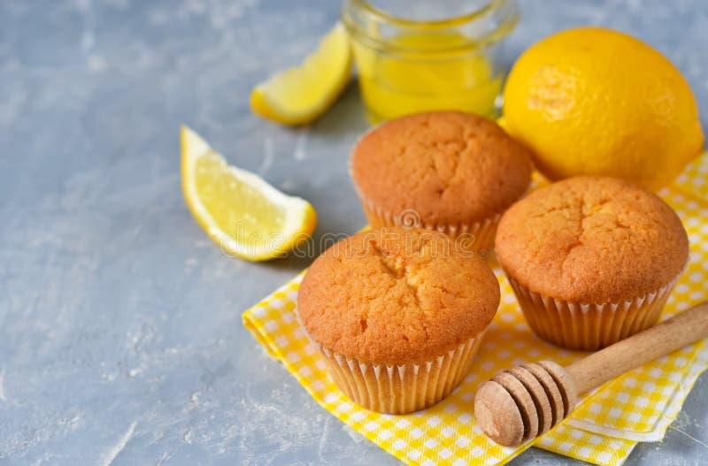Selbst gemachte, Zitronenmuffins mit Honig und Minze lizenzfreie stockfotografie