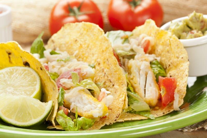 Selbst gemachter frische Fische Tacos stockbilder