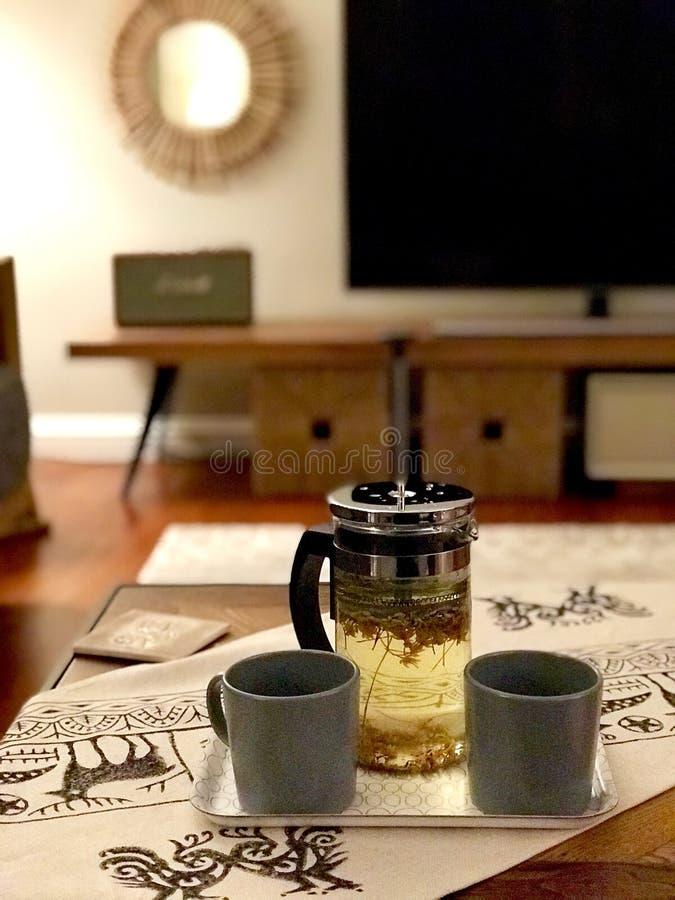Selbst gemachter gr?ner Tee mit franz?sischer Presse zu Hause stockbilder