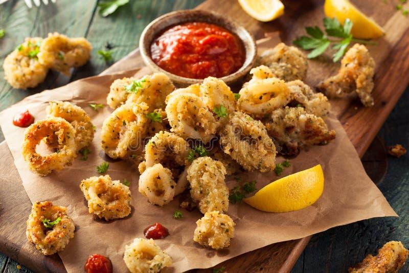 Selbst gemachter panierter Fried Calamari stockbild