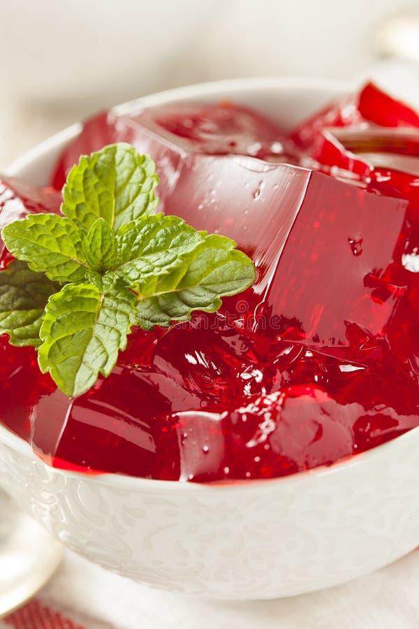 Selbst gemachter roter Cherry Gelatin Dessert lizenzfreies stockbild