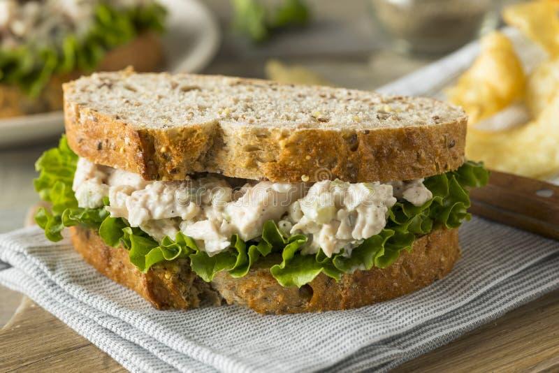 Selbst gemachtes gesundes Geflügelsalat-Sandwich lizenzfreie stockfotografie