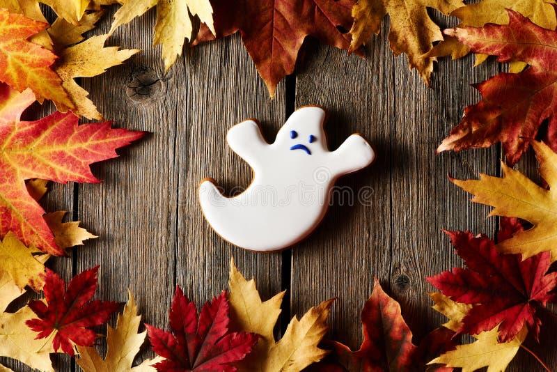 Selbst gemachtes Lebkuchenplätzchen Halloweens lizenzfreie stockbilder