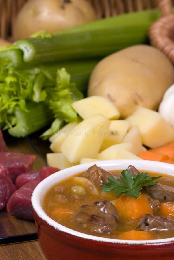 Selbst gemachtes Rindfleisch-Eintopfgericht 001 stockfoto
