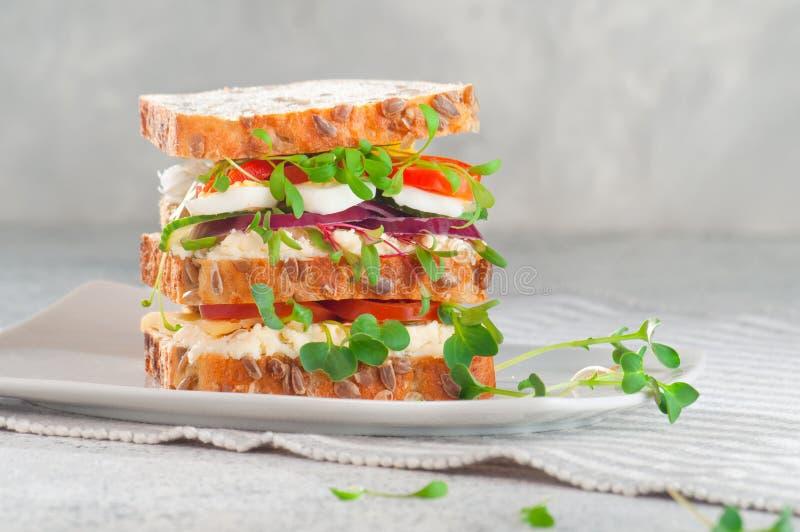 Selbst gemachtes Sandwich mit Vollkornbrot, Wachteleier, Käse, Tomate und Rettich und Kressesprösslinge stockfoto
