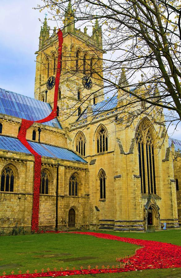 Selby Cathedral Poppy Centenary Memorial 2 imagem de stock royalty free