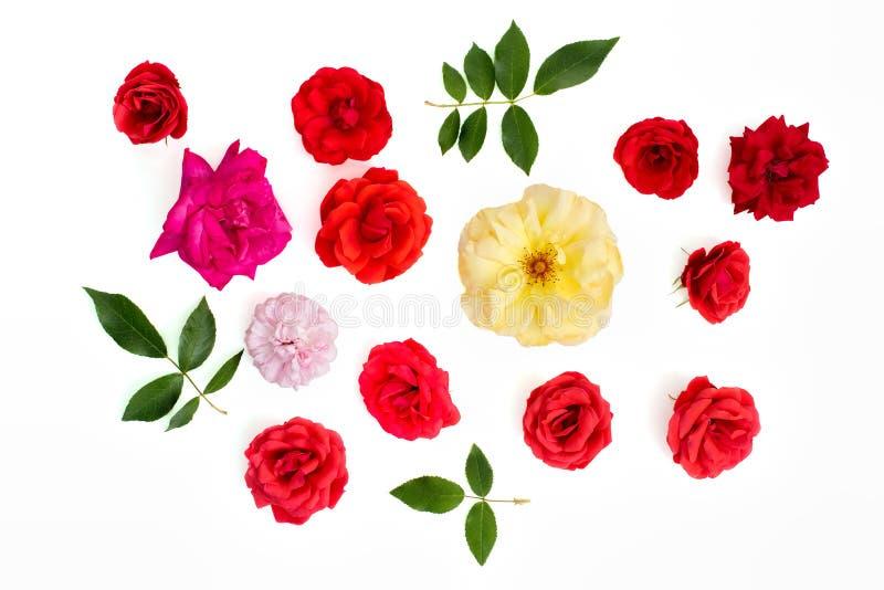 Seleção cor-de-rosa real da flor Entalhe da colheita do ofício Liso-configuração branca do fundo fotos de stock royalty free