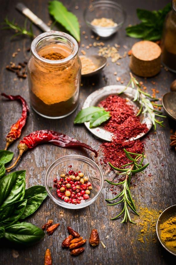 Seleção das ervas e das especiarias com grãos de pimenta coloridos e o pimentão seco no fundo de madeira rústico fotos de stock