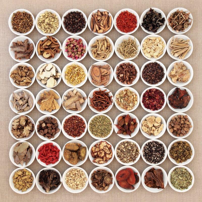 Seleção tradicional da medicina chinesa imagem de stock