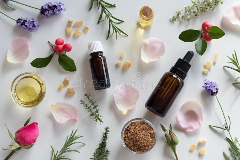 Selección de aceites esenciales y de hierbas en un fondo blanco imágenes de archivo libres de regalías