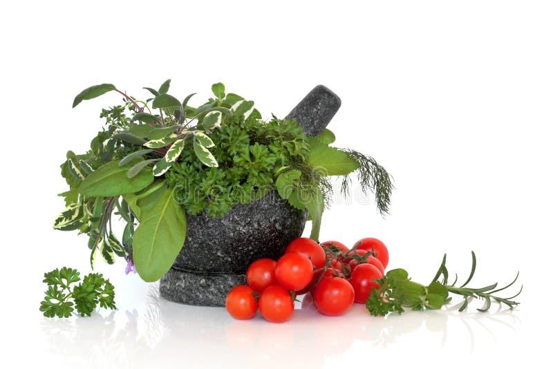 Selección de la hoja de la hierba con los tomates fotos de archivo libres de regalías