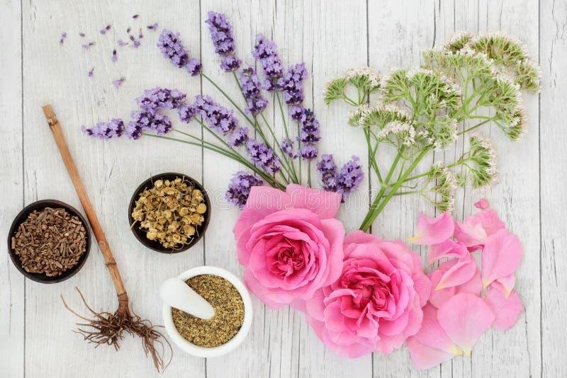 Selección de la medicina herbaria foto de archivo libre de regalías