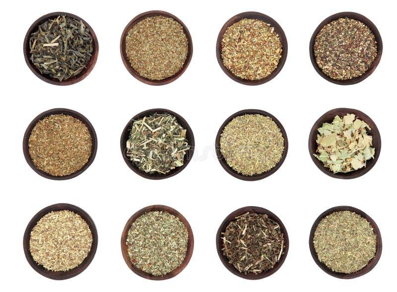 Selección del té verde imágenes de archivo libres de regalías