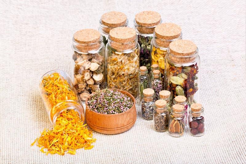 Selección naturopathic herbaria de la medicina también usada en witche pagano imágenes de archivo libres de regalías