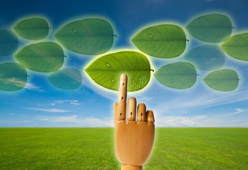 Selecione o verde fotos de stock royalty free