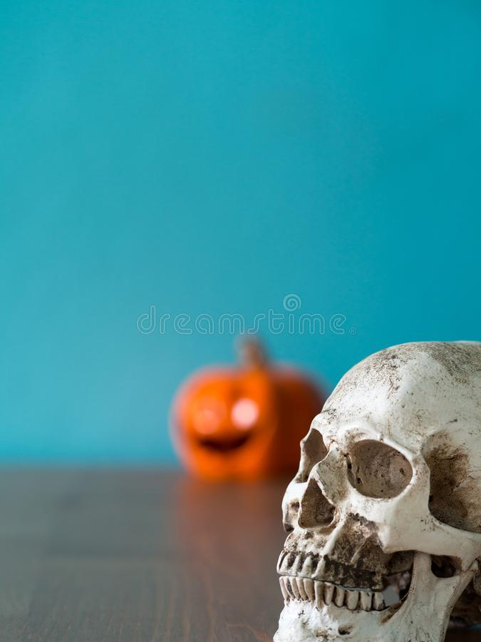Select focus for the skull in front of halloween pumpkin hat on the wooden table. the background is blue and copy space for text royalty free stock images