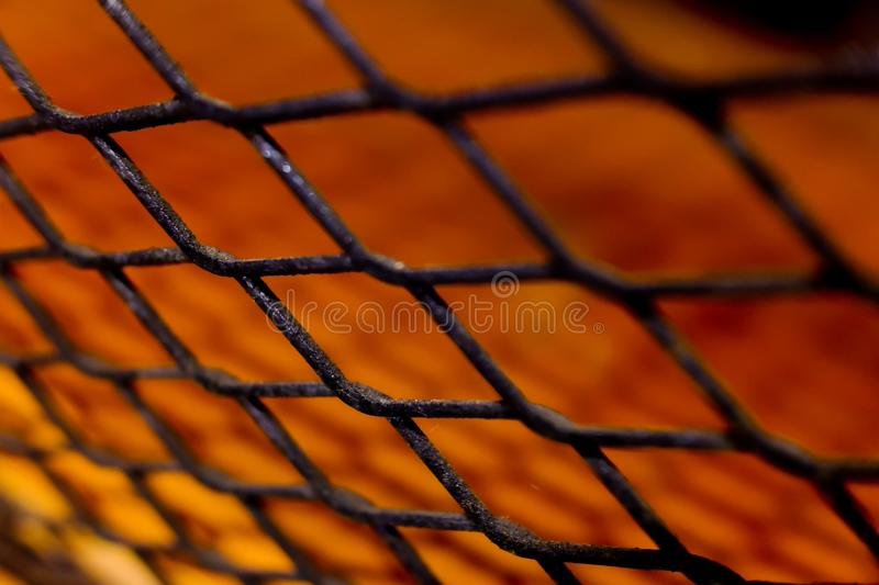 The Selected Focus on Jail Fence with the Shadow for Background Wallpaper royalty free stock photography