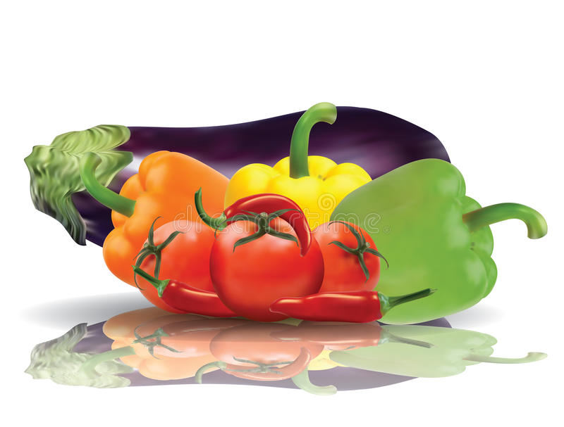 Download Selected Vegetables With Reflection Stock Vector - Illustration: 32116923