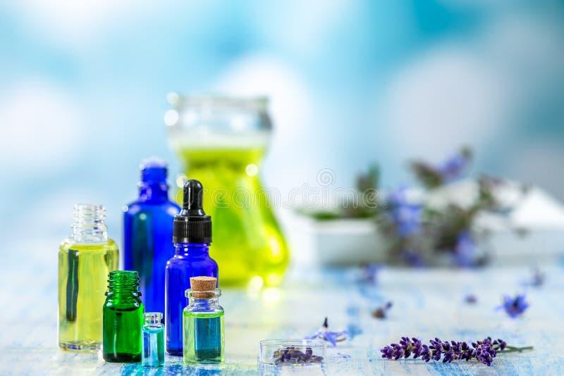 Selectie van etherische oliënflessen en kruiden en bloemen, thyme en borage op een blauwe achtergrond royalty-vrije stock foto