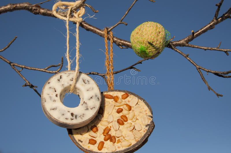 Selection of bird food. A selection of bird food hanging from a tree in winter stock images