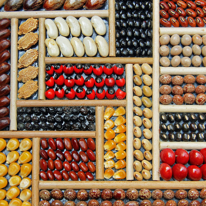 Selection of dry beans in various colors.  royalty free stock images