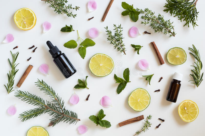 Selection of essential oils and herbs on a white background stock images