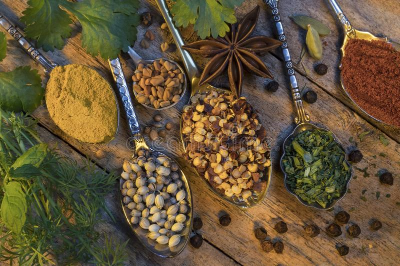 Herbs and spices used to add flavor to cooking stock images